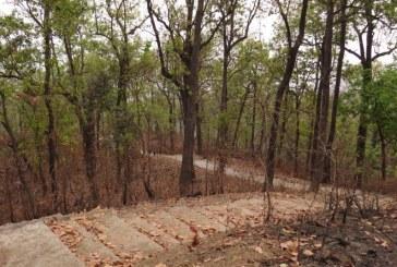 वन तथा भू–संरक्षण मन्त्रालयद्धारा धार्मिक वन हस्तान्तरण